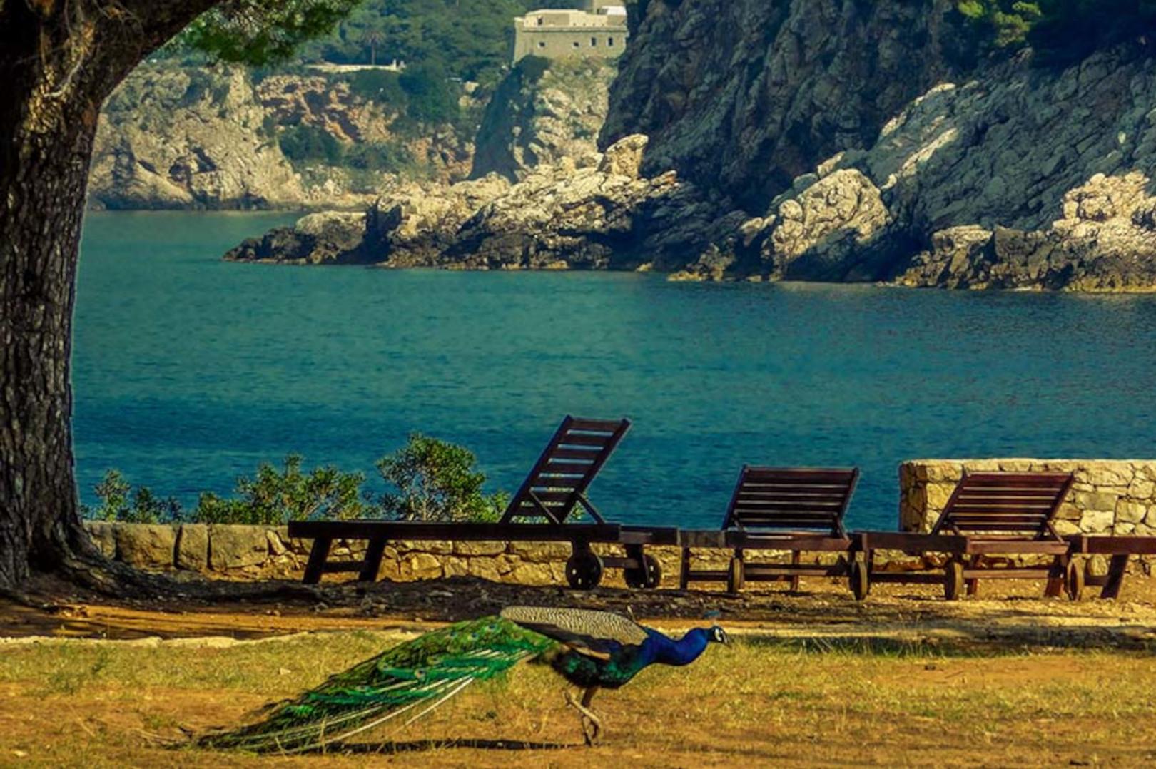LOKRUM: Ukleti raj nadomak Dubrovnika